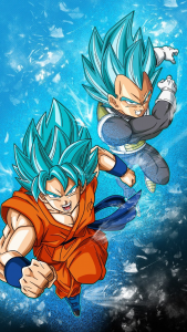 goku-y-vegeta-super-saiyan-blue