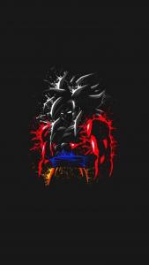goku-super-saiyan-4-rojo-y-negro