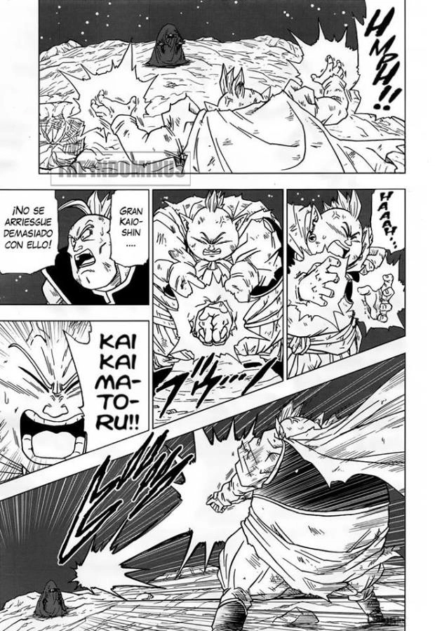 dragon-ball-super-manga-43-en-castellano-español-pagina-13