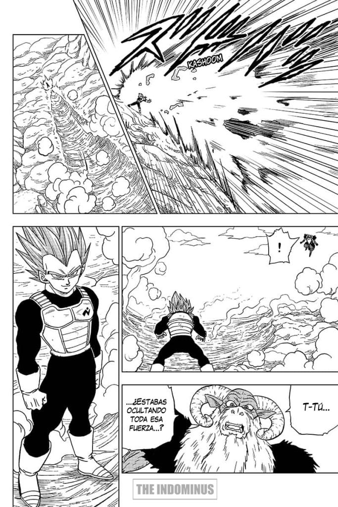manga-dragon-ball-super-numero-45-en-español-pagina-24