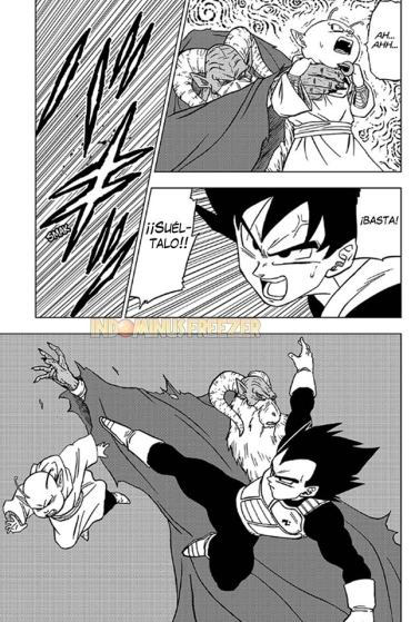 manga-dragon-ball-super-numero-44-en-español-pagina-27